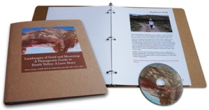 Therapeutic Guide and DVD on grief and loss